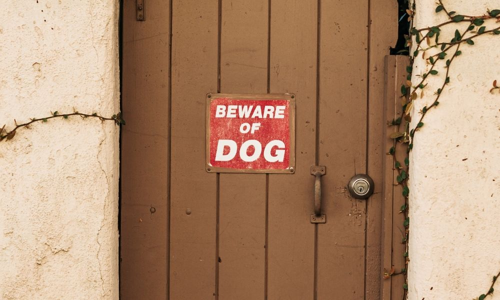 door with sign reading beware of dog